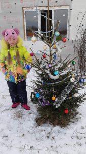 елка во дворе д Мокеево Герасимова Марина2
