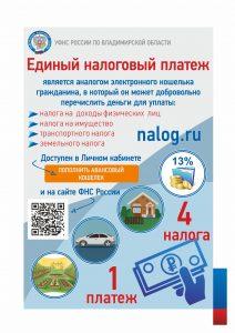 Владимир листовки ЕНП А5 80 гр 4 4 1000 экз
